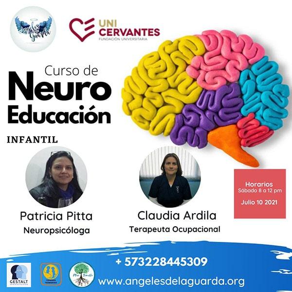 Curso de neuro educación